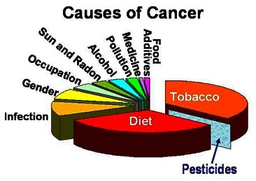 causes of cancer pic resized 600