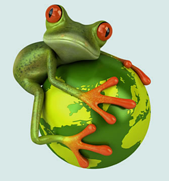 globefrog resized 600